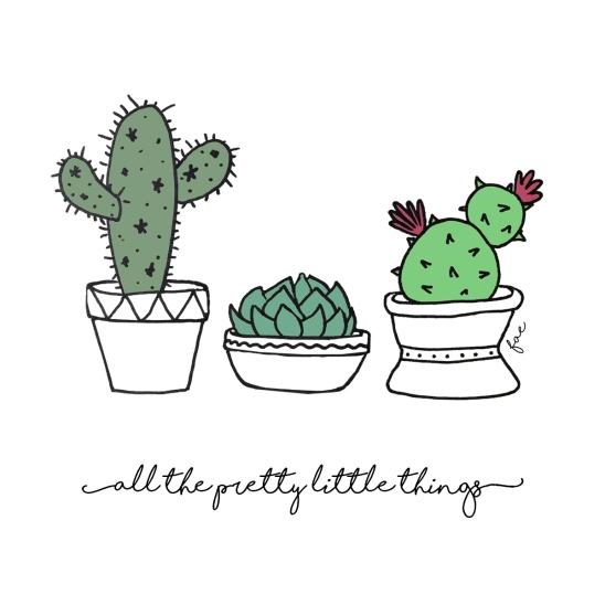 succulent_doodles.jpg